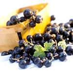 Чорна смородина: склад, властивості і користь чорної смородини