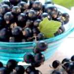 Чорна смородина - смачно і корисно!