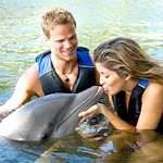 Дельфінотерапія в теорії і на практиці