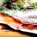 Форель: склад, користь і властивості, форель в кулінарії, засолювання форелі