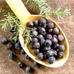 Ефірна олія ялівцю: склад, користь, властивості, застосування ялівцевого масла