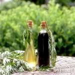 Ефірна олія полину: властивості та застосування полинового масла