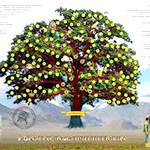 Як скласти генеалогічне дерево своєї родини