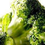 Капуста брокколі: склад, користь і властивості брокколі, брокколі в кулінарії