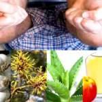 Засоби народної медицини в боротьбі з гемороєм