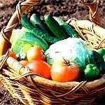 Вітаміни восени, осінні вітаміни, які вітаміни приймати восени