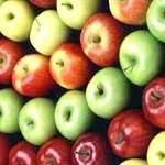 Яблука корисні властивості і лікувальні властивості яблук