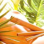 Креольський бамбуковий масаж: показання до масажу, техніка виконання, бамбукові палички для масажу