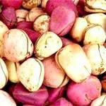 Горіх кола: склад, користь і властивості горіха кола