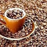 Шкода і користь кави